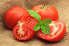 Sweet tomatoes with basil  in linen bag Royalty Free Stock Photography