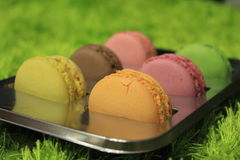 Sweet tongue. Detailed photo of French macroons - the favouritest dessert royalty free stock photos