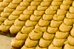 Sweet turkish baklava Royalty Free Stock Photography