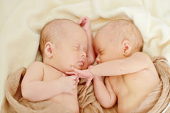 Sweet twins Royalty Free Stock Photos