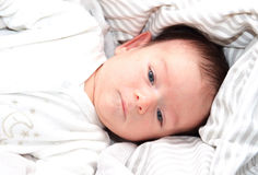 Sweet two months old blue eyed little baby`s portrait.  Stock Photography