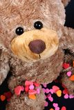 Sweet valentine bear Stock Photos