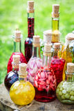Sweet various liqueur with fruits and alcohol Stock Image