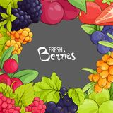 Sweet berry frame. Sweet vector berry frame on gray background vector illustration