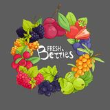 Sweet berry frame. Sweet vector circle berry frame on gray background vector illustration