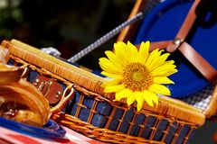 Sweet vintage picnic basket. Picnic basket with sunflower and sweet dessert on the table Royalty Free Stock Images