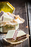 Sweet wafers with chocolate and hazelnut in old box Stock Image