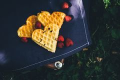 Sweet waffles with raspberries for dessert outdoor picnic in the garden. Copy space Stock Image