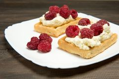 Sweet waffles with cream and fresh raspberries. Dessert stock photos
