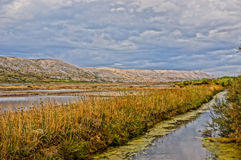 Sweet water stream next to a saline. HDR picture Stock Images