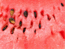 Sweet watermelon background Stock Photography
