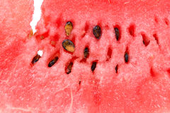 Sweet watermelon background Royalty Free Stock Image