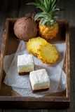 Sweet white cake with pineapple and brown bottom Royalty Free Stock Image