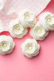 Sweet white meringue. Royalty Free Stock Image