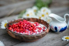 Sweet wild strawberries in plate with chamomile on wooden background, top view. royalty free stock photo