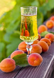 Sweet wine and ripe apricots Stock Photo