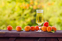 Sweet wine and ripe apricots Royalty Free Stock Images