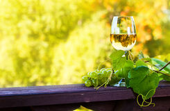 Sweet wine in vineyard Royalty Free Stock Photography