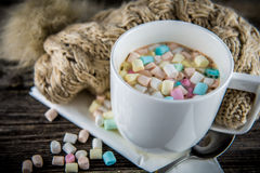 Sweet winter Stock Images