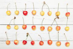 Sweet yellow cherry, bright antioxidant food.  stock images