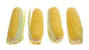 Sweet yellow corn Royalty Free Stock Image