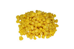 Sweet yellow corn on a white background Stock Images