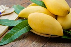 Sweet yellow mango fruit on summer on wood table.  Royalty Free Stock Photos