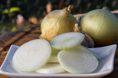 Sweet yellow onions Royalty Free Stock Photography