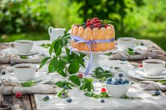 Sweet yoghurt cake with berries and biscuits in garden Stock Photo