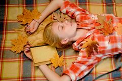 Sweet young woman playing with leaves and looks very sensually. Happy young woman preparing for autumn sunny day. Attractive young woman wearing in fashionable royalty free stock photo