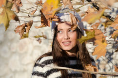 Sweet young woman standing among yellow leaves. Very sweet and pretty young woman outdoor, wear winter knitted cap standing among yellow leaves stock image