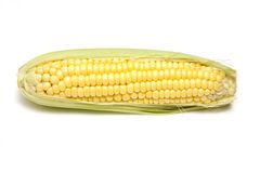 Sweetcorn Royalty Free Stock Photography