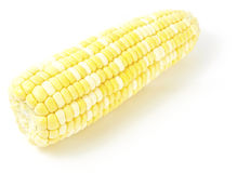 Sweetcorn Stock Images