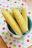 Sweetcorn in a bucket Royalty Free Stock Images