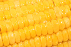 Sweetcorn with butter Stock Image