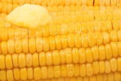 Sweetcorn com manteiga de derretimento Imagens de Stock
