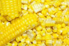 Sweetcorn kernels Stock Image