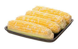 Sweetcorn Package isolated Royalty Free Stock Photos