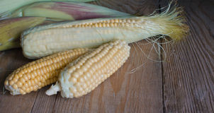 Sweetcorn Royalty Free Stock Photos