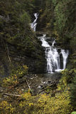Sweetcreek Falls. Royalty Free Stock Photos
