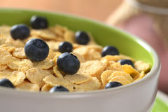 Sweetened Corn Flakes with Fresh Blueberries Stock Photography
