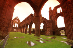 Free Sweetheart Abbey Royalty Free Stock Images - 20376719