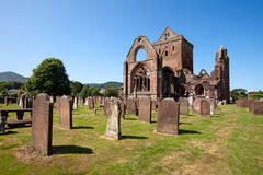 Sweetheart Abbey Stock Photo