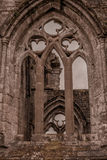 Sweetheart Abbey. Medieval Lancet windows of the Sweetheart Abbey ruin Royalty Free Stock Image