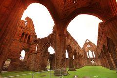 Sweetheart Abbey, ruined Cistercian monastery Stock Photos