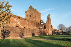 Sweetheart Abbey, Scotland Royalty Free Stock Images