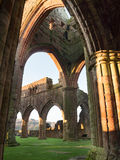 Sweetheart Abbey, Scotland. The ruins of Sweetheart Abbey , also known as Abbey of Dulce Cor, in the Galloway region in Scotland Royalty Free Stock Photos
