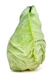 Sweetheart Cabbage. Pointed Sweetheart Cabbage from low perspective isolated on white Royalty Free Stock Photo