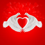Sweethearts. Two white doves holds red heart in wings Stock Photos