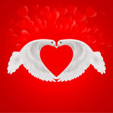 Sweethearts. Two white doves make the shape of the wings of the red heart Royalty Free Stock Image